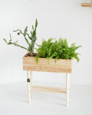 Skógarnytjar: Plant Stand